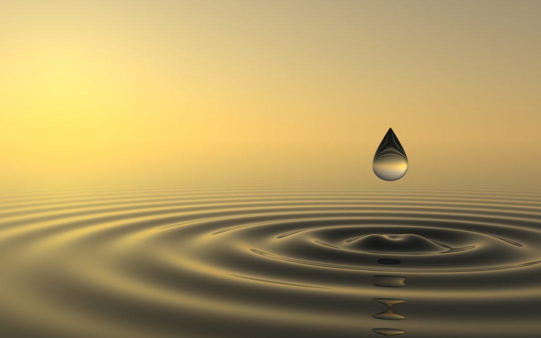 Sound Nourishment: Rebalance, Refresh, Reconnect